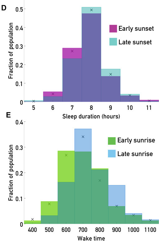 Later sunset time increases sleep duration. The sunset distribution is divided into thirds; purple indicates the population experiencing the earliest third, blue indicates the population experiencing the latest third. (E) Later sunrises shift wake time later. Green, histogram of wake times for users experiencing early sunrises (before 0530); blue, histogram of wake times for users experiencing later sunrises (after 0730). Black x's indicate the overall population mean.