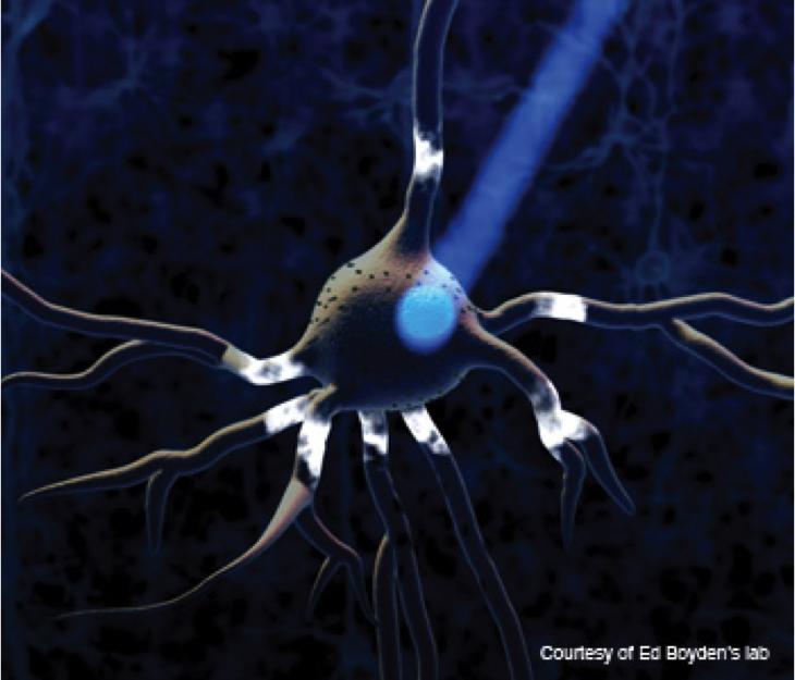 Optogenetics to repair neurons