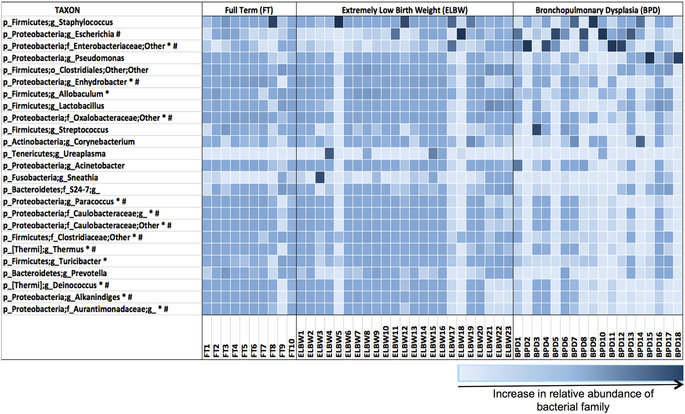 Heatmap depicting the relative abundance of the most common bacterial families at the genus level. Statistically significant difference in microbial abundance is seen between lung microbiome of ELBW and BPD infants (*) and between FT and BPD infants (#). / Credit: Scientific Reports Lal et al
