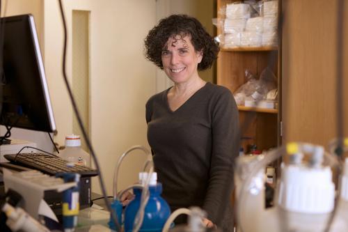 Mady Hornig, MD, professor of Epidemiology at Columbia University's Mailman School of Public Health