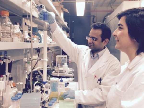 Vimal Maisuria (left) and Nathalie Tufenkji in the lab.