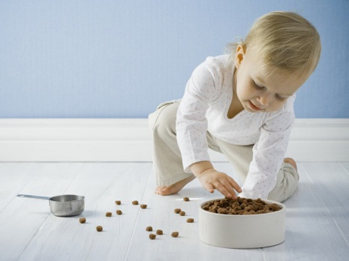 Small children, the elderly and immunocompromised individuals are especially susceptible to bacteria that might be present in your pet's food.