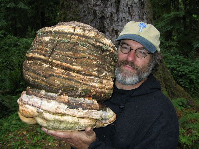 Paul Stamets, a leading mycologist, has discovered a way to keep insects off crops without the need for chemical-pesticides. Stamets'