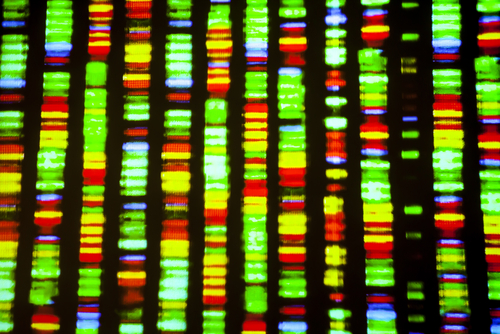 Can cancer cells repair their DNA?  Mapping the genome can help target ways to avoid that capability by choosing better drugs.