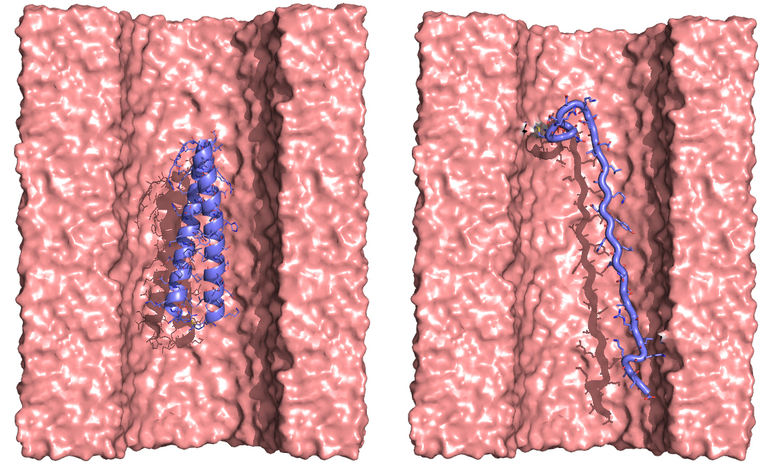 Nanoscopic threading reveals protein structure.