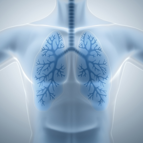 A new autoimmune syndrome characterized by a combination of severe lung disease and arthritis currently has no therapy.
