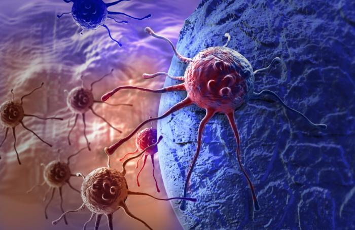 A new drug is designed to keep cancer cells from accessing metabolic pathways, thus keeping them from growing.