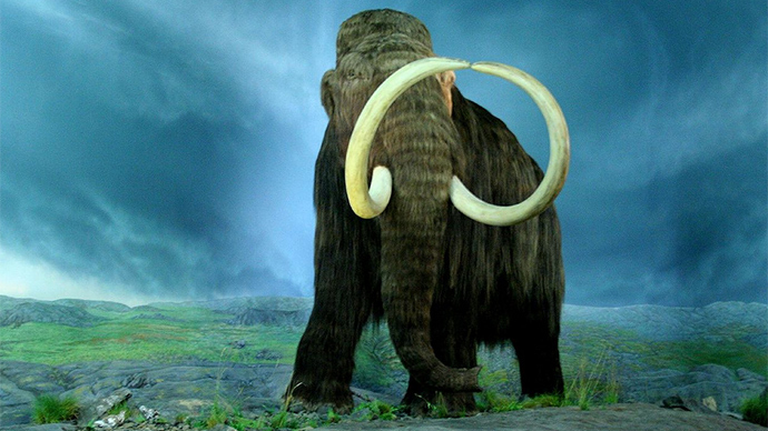 The Woolly Mammoth at the Royal BC Museum, Victoria, British Columbia
