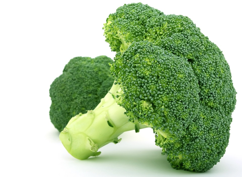 Antioxidants in Broccoli May Prevent Mouth Cancer Trending   LabRoots ... Human Animal Mutations