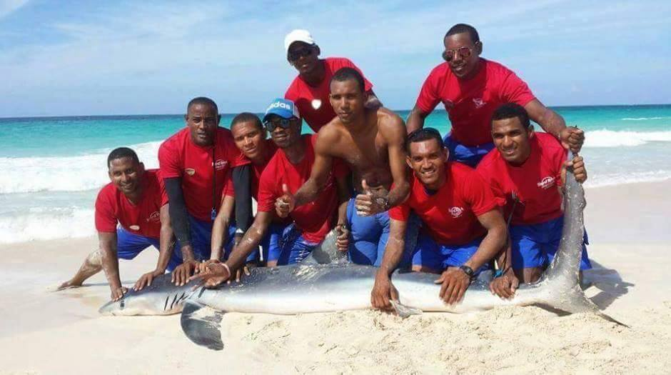 The men who dragged the shark out of the ocean pose with it for a photo.