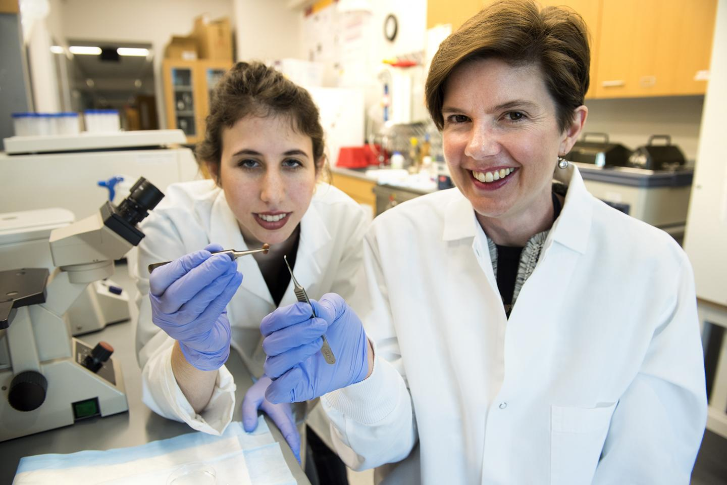 Associate Professor Brenda Ogle (right) and Ph.D. student Molly Kupfer (left). Credit: Patrick O'Leary, University of Minnesota