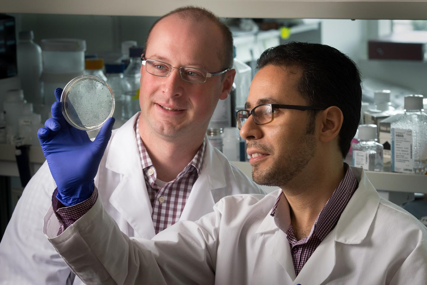 Corresponding author Benjamin Youngblood, PhD with first author Hazem Ghoneim. Credit: Seth Dixon / St. Jude Children's Research Hospital