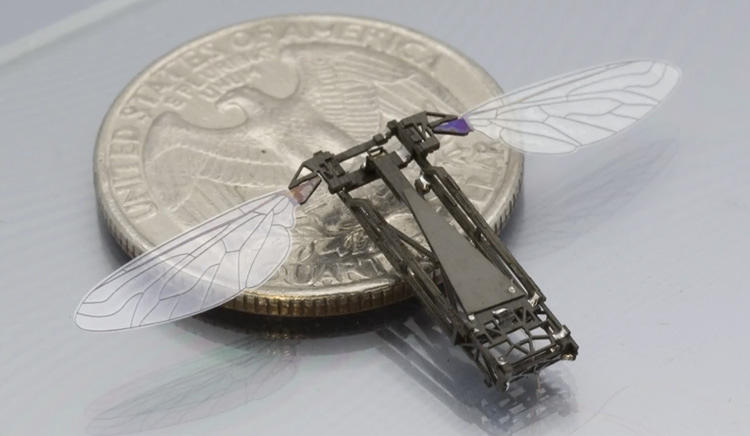 This little robot can fly and swim.