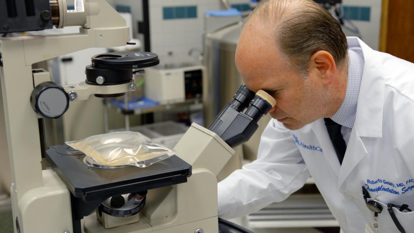 Dr. Roberto Gedaly examines a solution under a microscope. / Credit: UK Research Communications