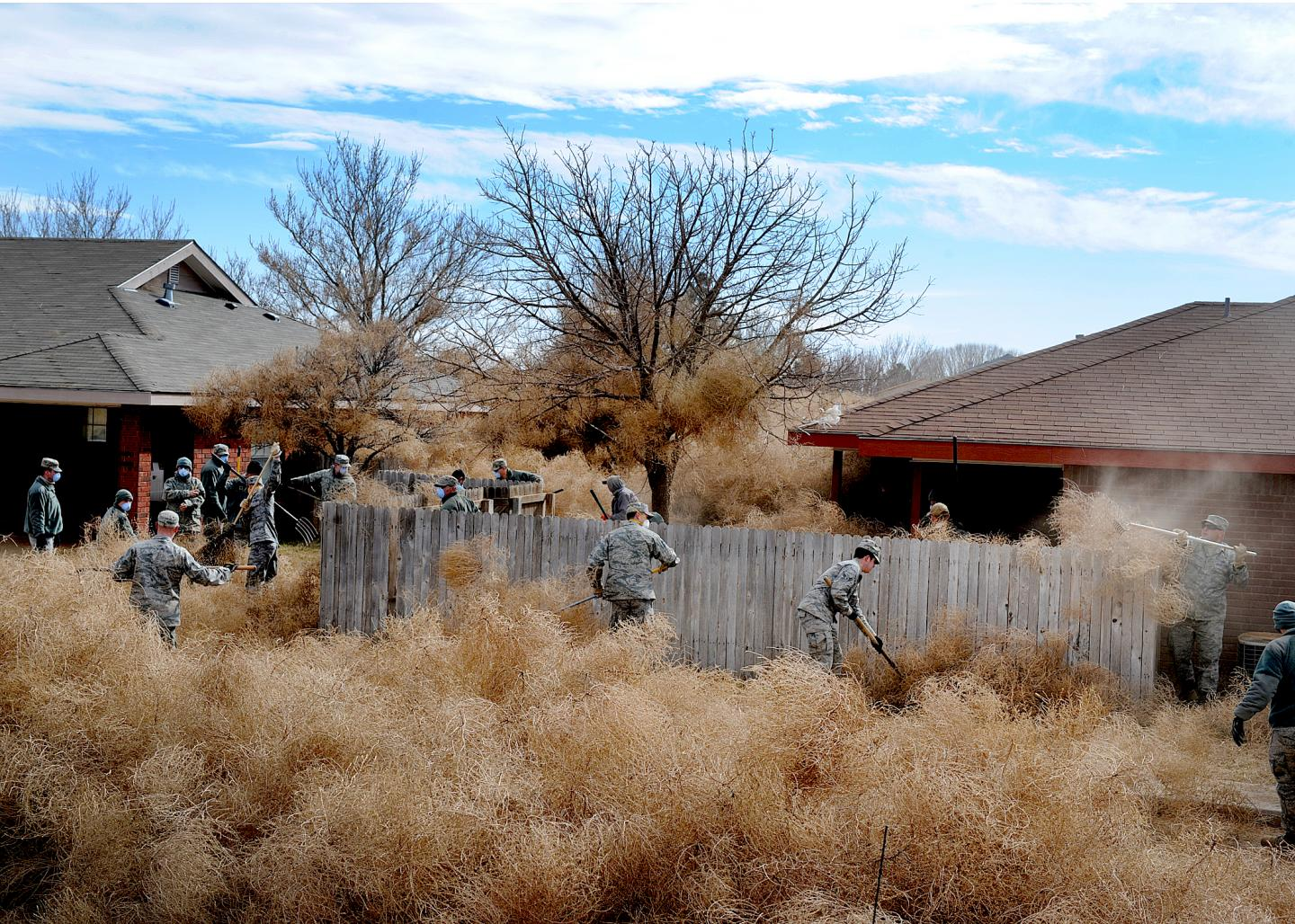 Commandos from Cannon Air Force Base, N.M., clear tumbleweeds from a residential area in Clovis, N.M., 2014. / Credit: U.S. Air Force/Senior Airman Ericka Engblom