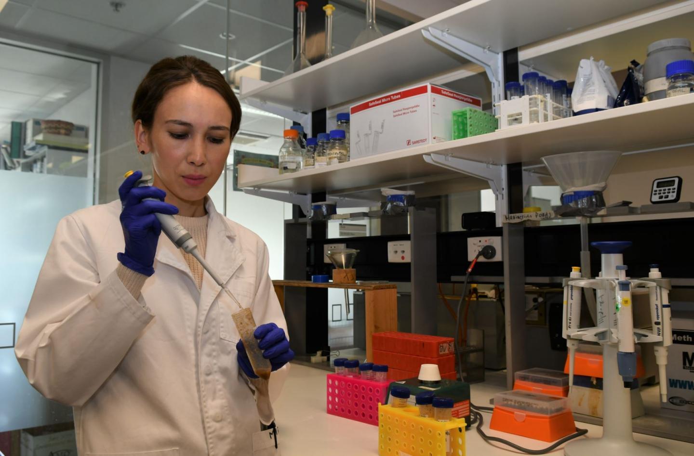 Flinders University researcher Mira Beknazarova tested more than 270 dog faeces samples collected in remote Australian communities. / Credit:  Flinders University