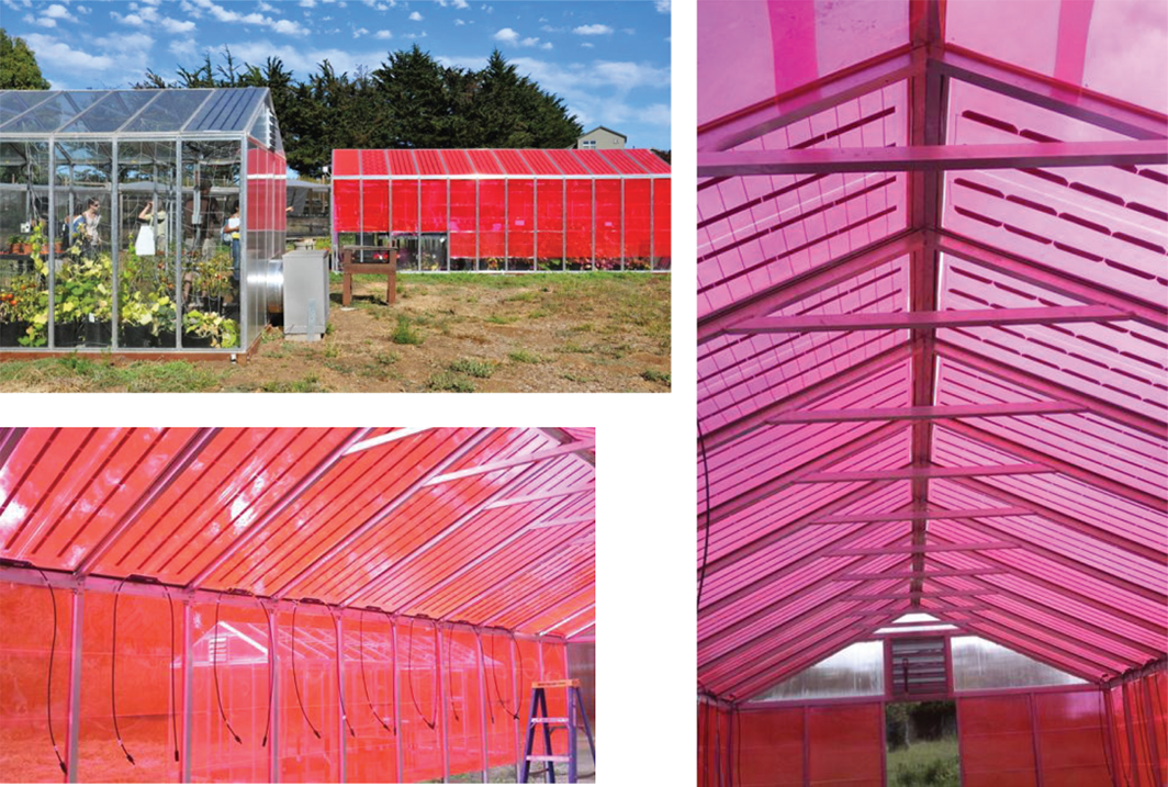 LUMO panels on greenhouse, credit: Creative Commons via Earth's Future