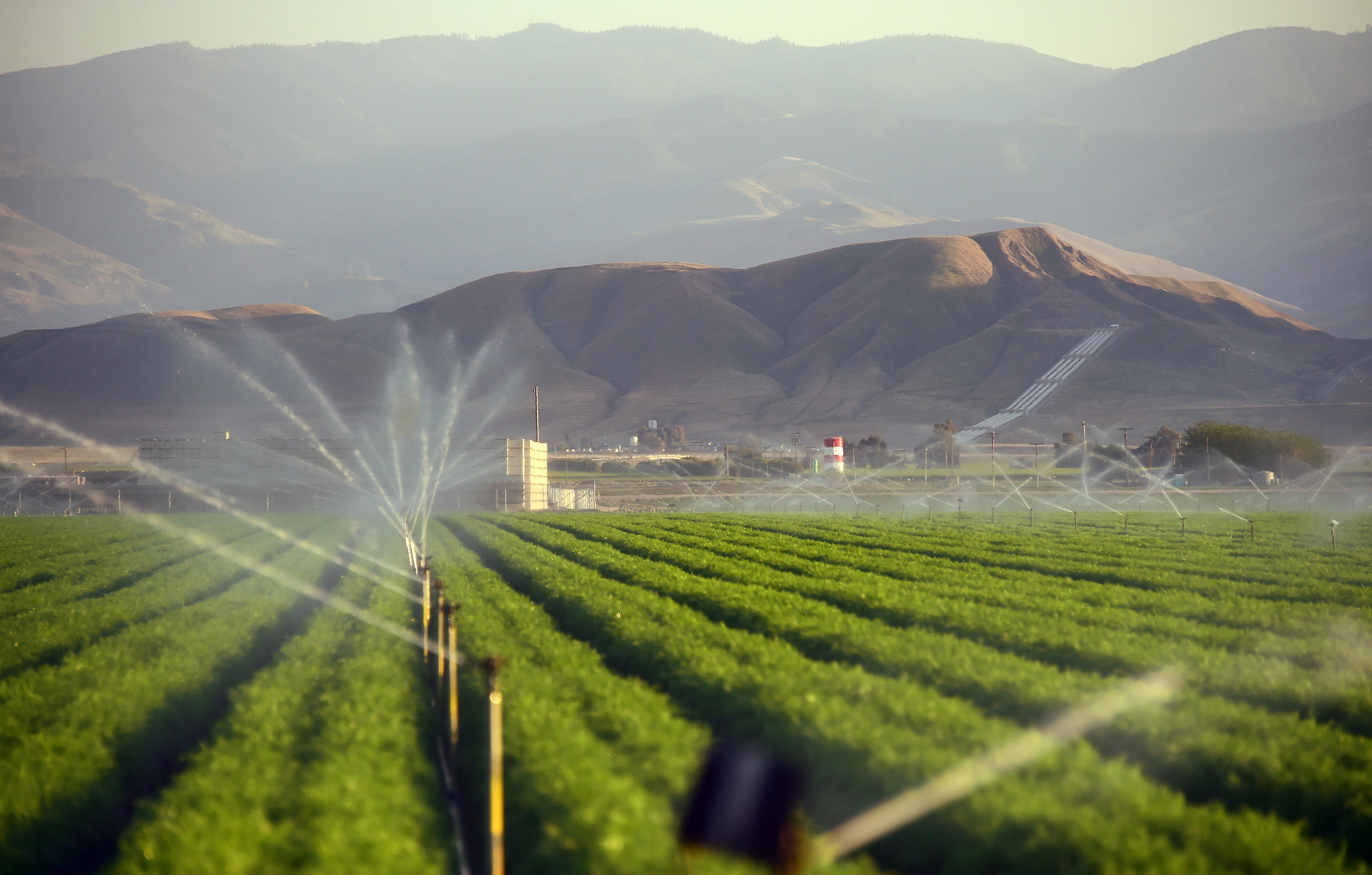 Irrigation in the San Joaquin Valley uses much of California's groundwater. Photo: KUOW