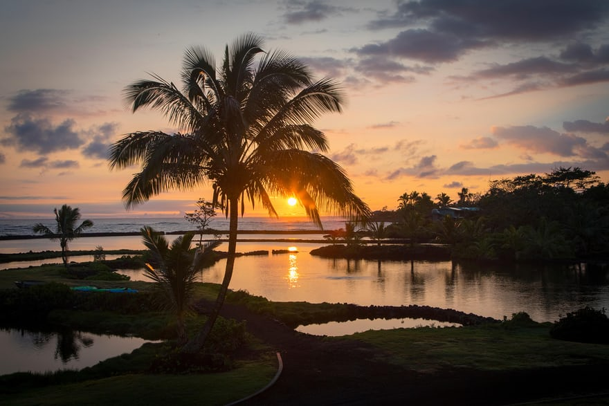 The Kapoho Bay tide pools before they were covered in lava. Photo: The Guardian