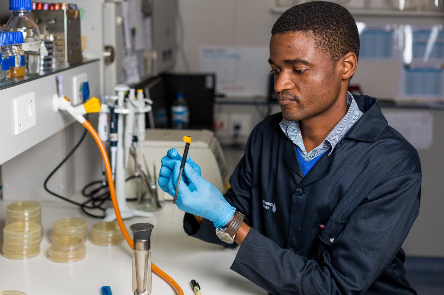 This is South African microbiologist, Dr Thando Ndlovu in his laboratory in the Department Microbiology, Stellenbosch University. / Credit: Stefan Els