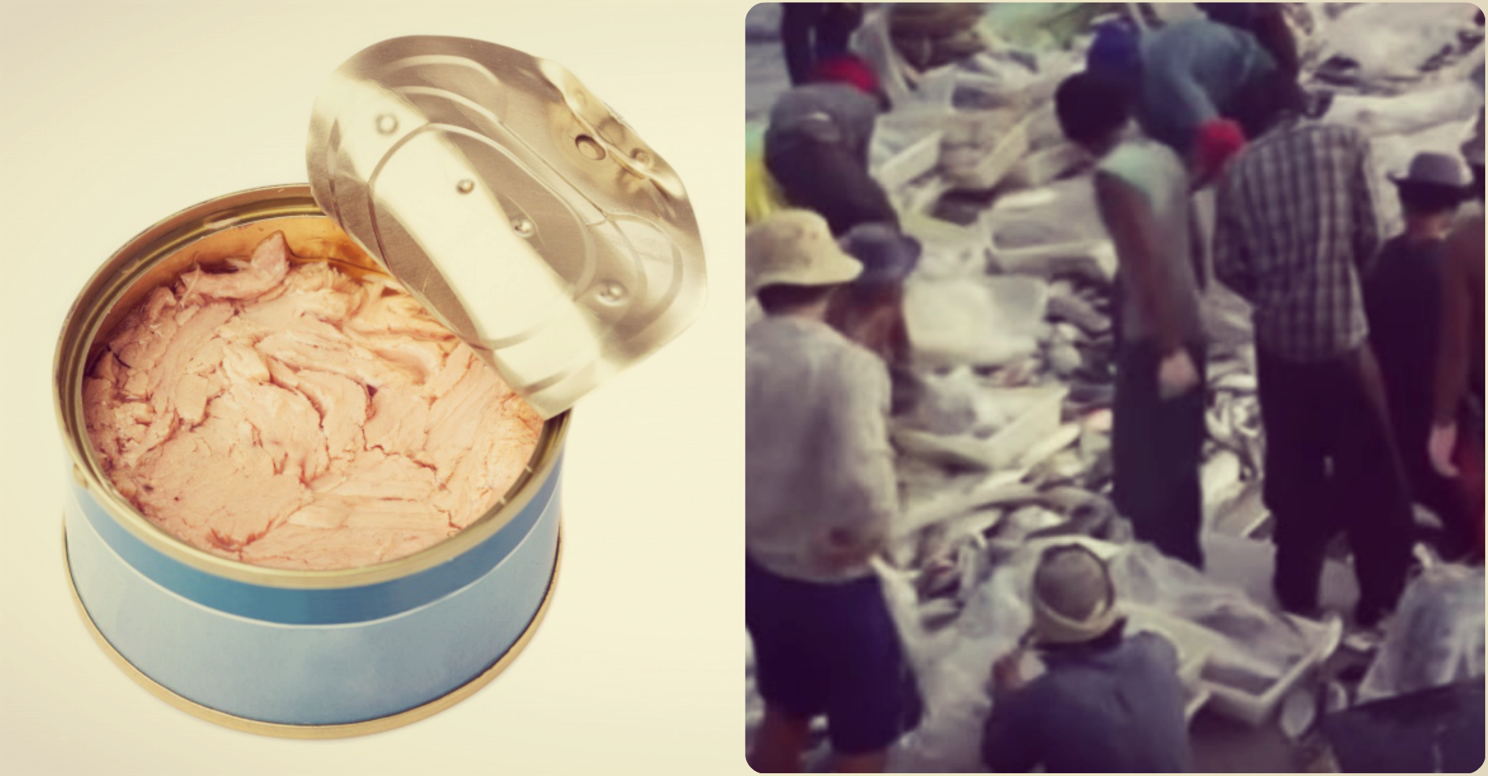 image of tuna can, image of people in slavery in the fishing industry, credit: public domain, AP, Ko Ko Simon