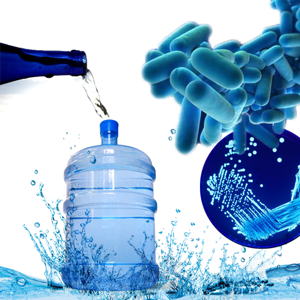 Legionella bacteria are transferred through the water supply.
