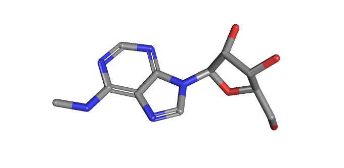 N6-Methyladenosine / Credit: PubChem