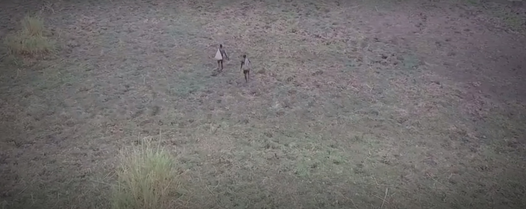 Drone footage shows poachers walking from in the skies.
