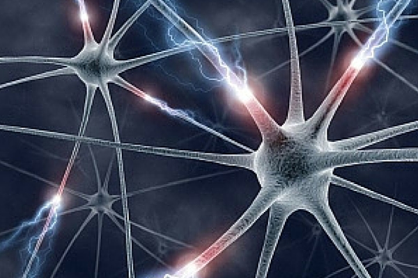 Seeing neurons is essential for brain research