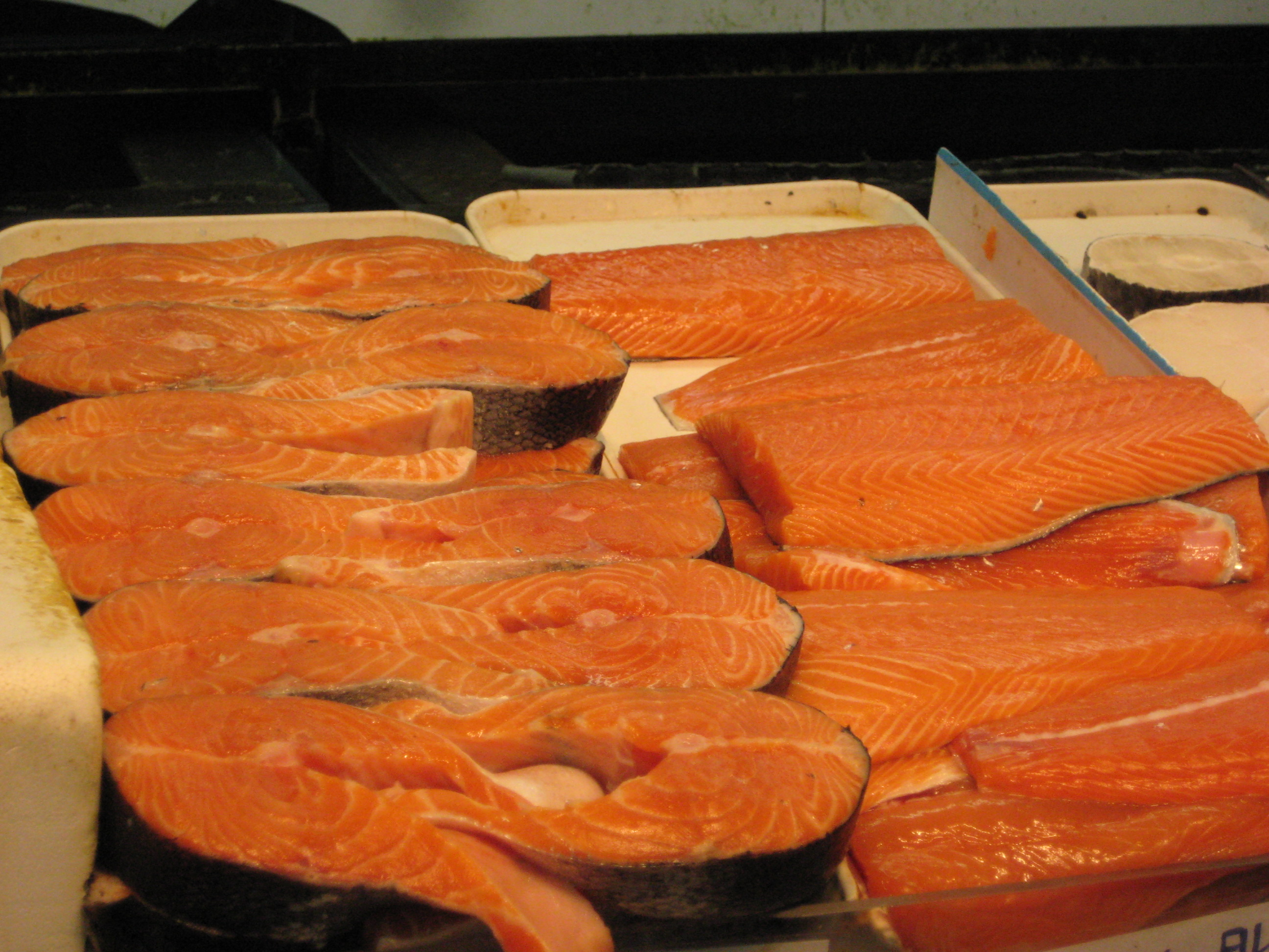Genetically modified salmon may soon be in stores near you.