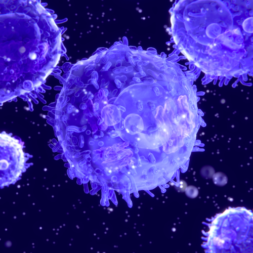 An image of T Cells / Credit: NASA/JSC Features