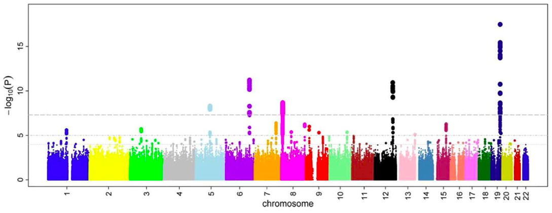 A Manhattan plot, a typical part of GWAS analysis. / Image credit: Ikram MK et al (2010) PLOS Genetics