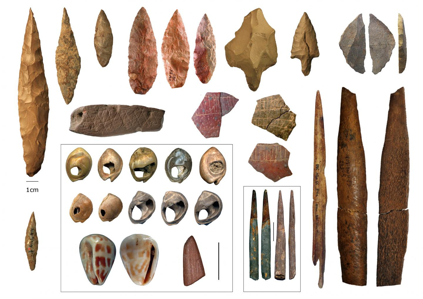 Middle Stone Age cultural artefacts from northern and southern Africa. / Credit Eleanor Scerri/Francesco d'Errico/Christopher Henshilwood