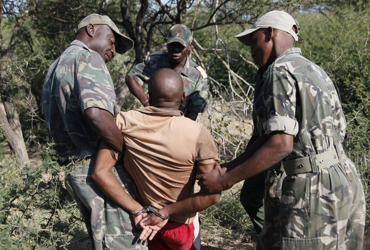 Rangers catch poachers who enters parks and wildlife reserves