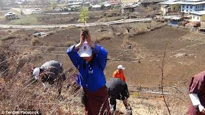 A man in Bhutan planting a tree for the celebration of the Royal Prince