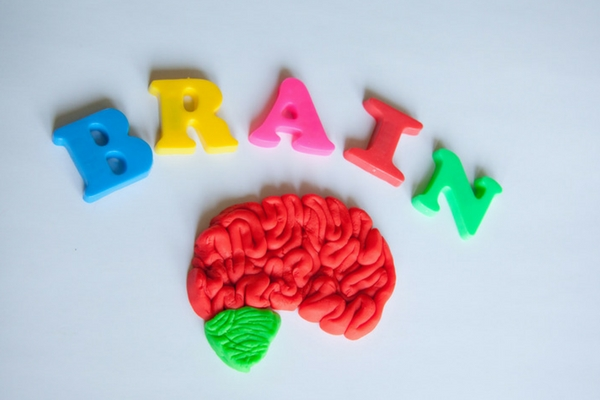 What the word center of the brain does