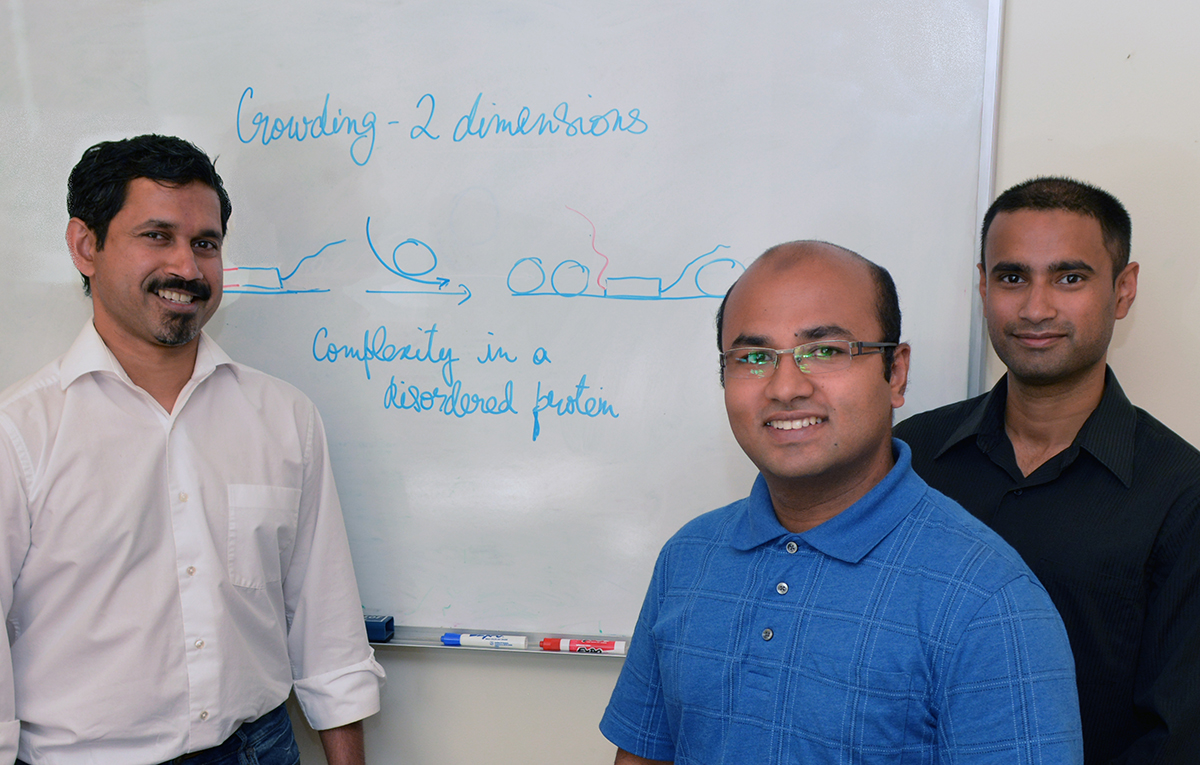"""The Scripps Research Institute's Ashok Deniz, Mahdi Muhammad Moosa and Priya Banerjee (left to right) were authors of the new study, which was designated as a """"hot paper"""" by Angewandte Chemie."""