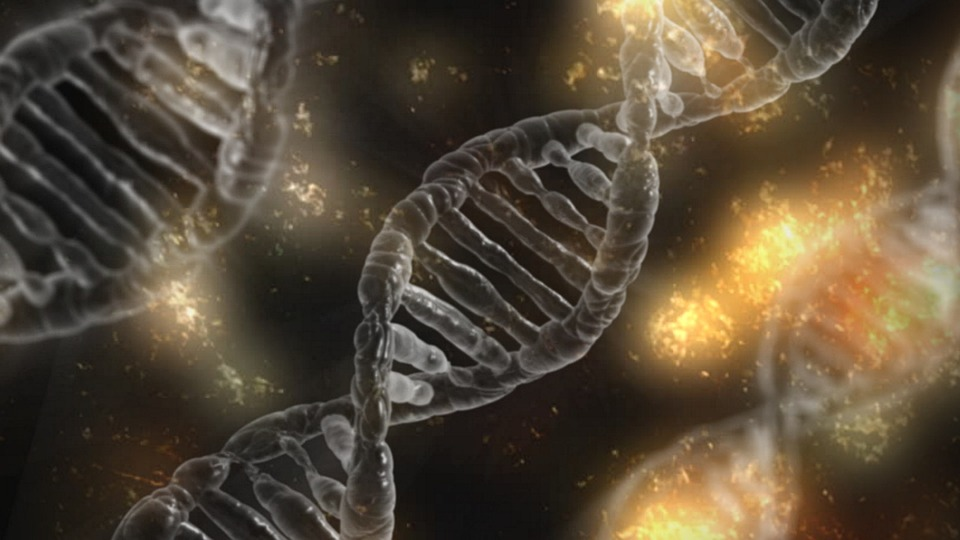 A mutation found in the dark matter of the human genome is linked to multiple kinds of cancer. Photo: Pixabay