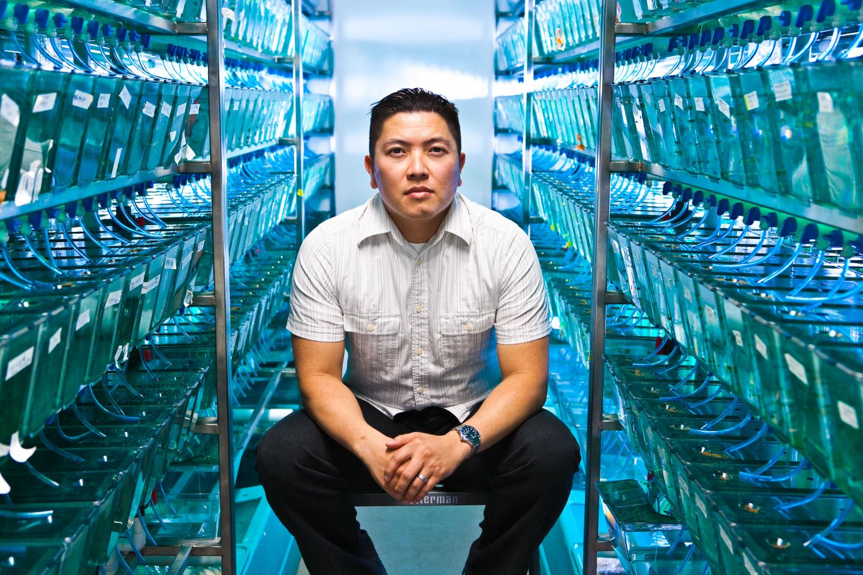 This is Duc Dong, Ph.D., assistant professor in the Human Genetics Program, among zebrafish tanks. / Credit: SBP