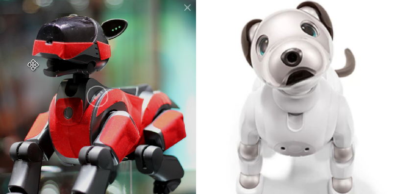 early Aibo and current version, credit: left: Creative Commons via Sven Volkens, right: Sony