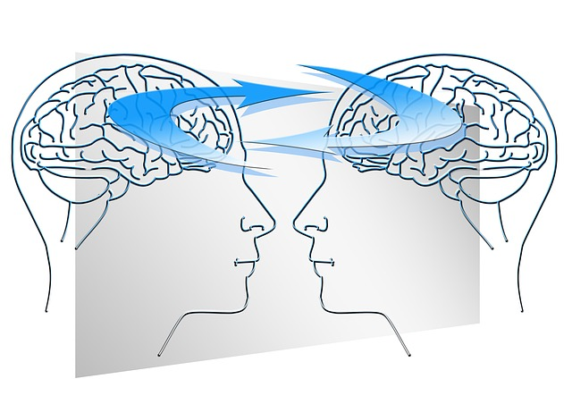 Crowdsourcing brain feedback could change how neuroscience research is done