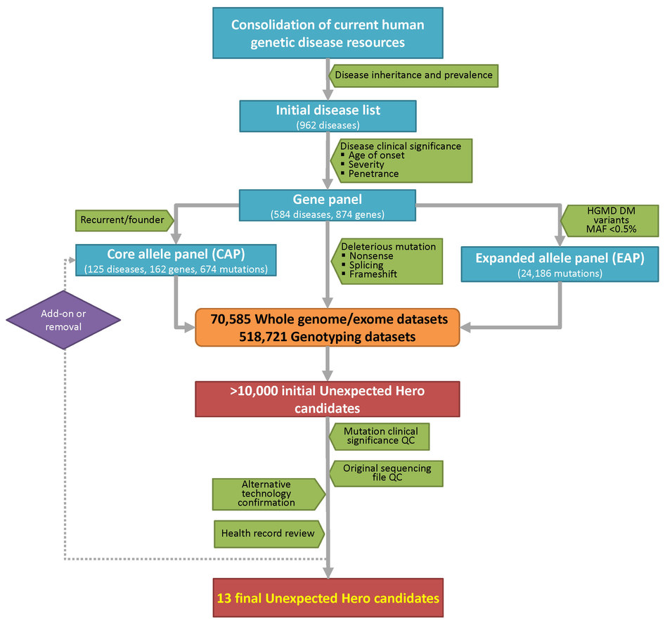 Genetic resilience analysis workflow.