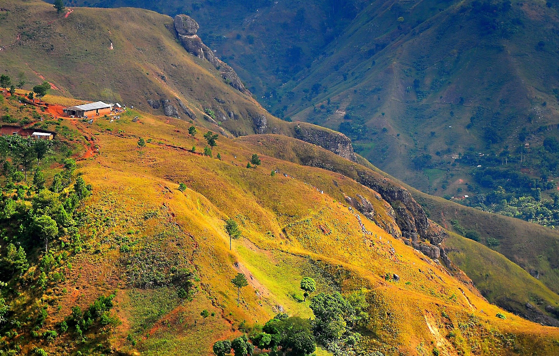 Deforested mountains cover Haiti. Photo: Phys.org