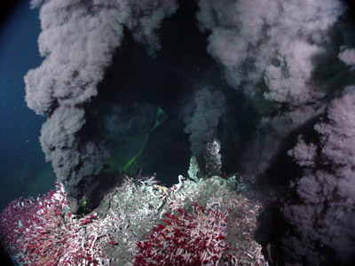 Hydrothermal sea vents, like the one this organism lived in. / Credit: NOAA