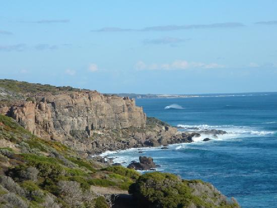 Coastal waters may act as more efficient carbon sinks than we knew. Photo: tripadvisor.com