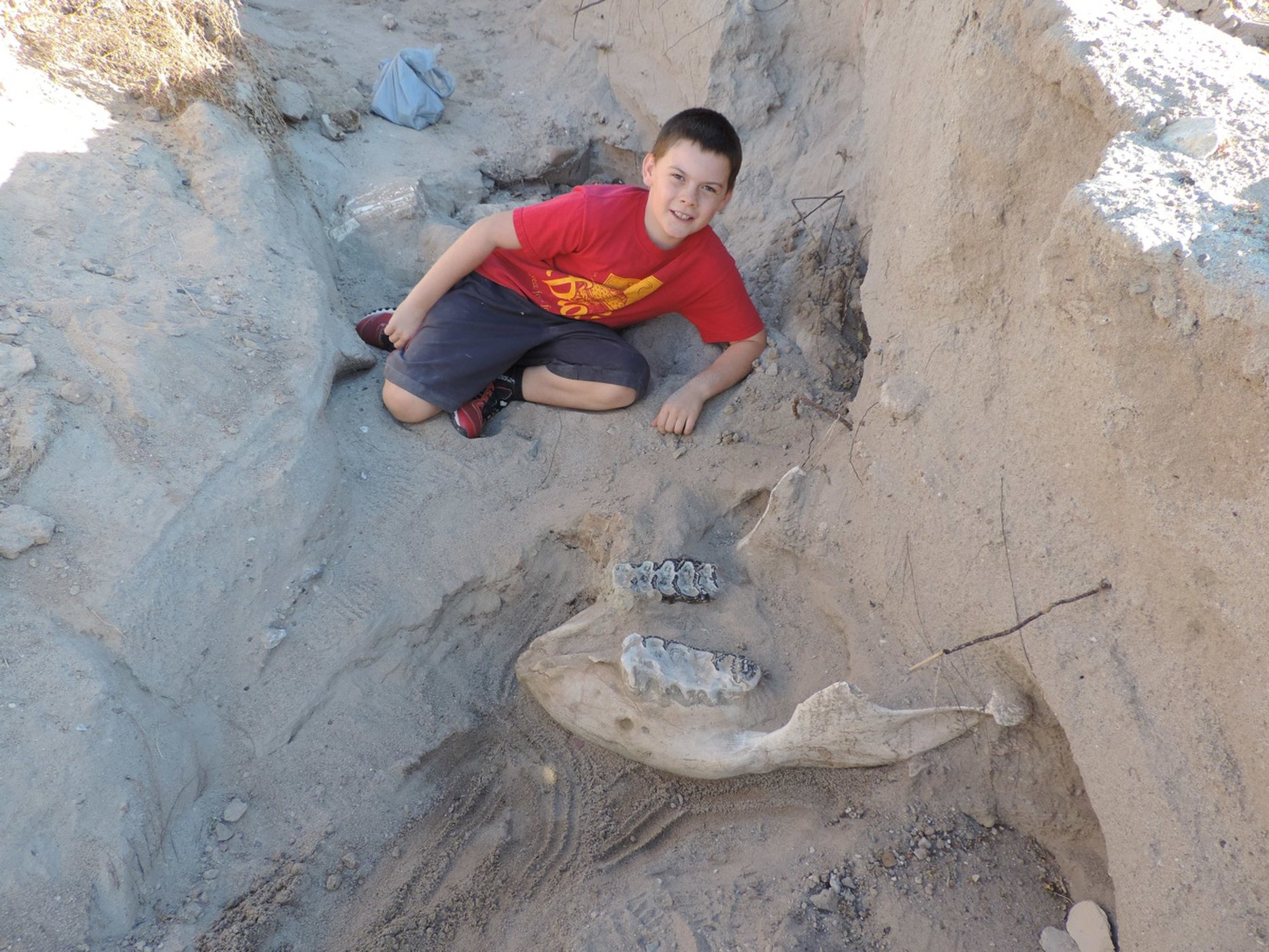 Jude Sparks poses alongside the nearly-excavated stegomastodon skull he tripped over while hiking.