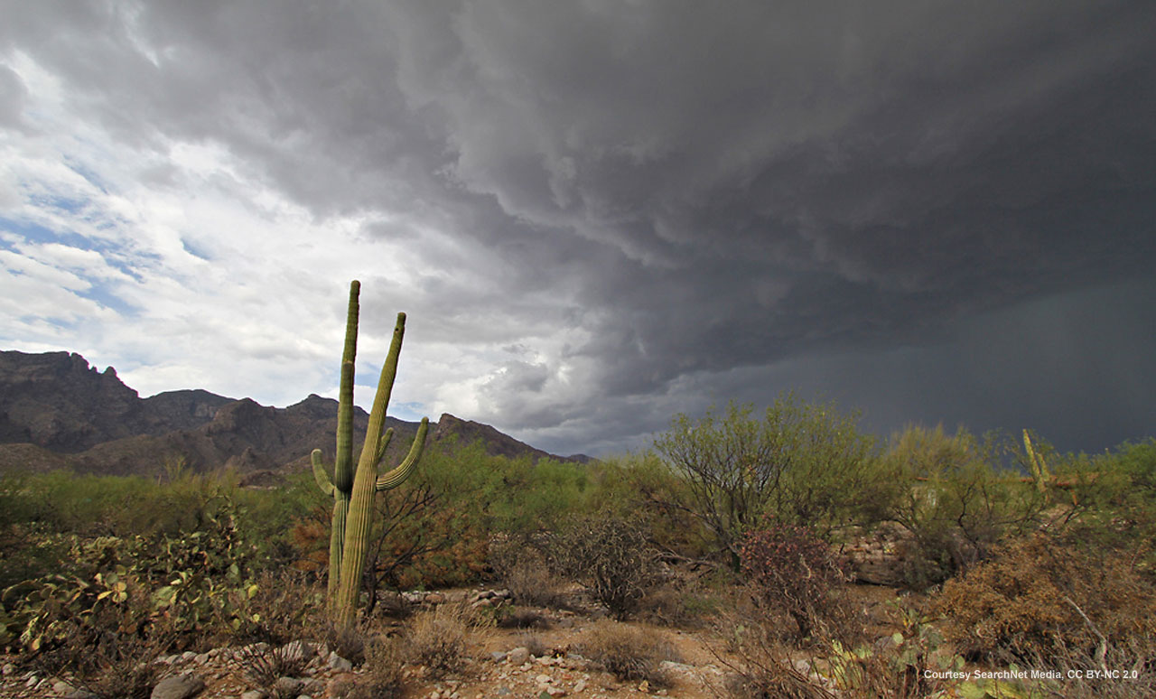 Monsoons often come on suddenly. Photo: The Arizona Experience