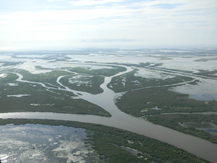 A view of the Mississippi River delta. Photo: Restore the Mississippi River Delta