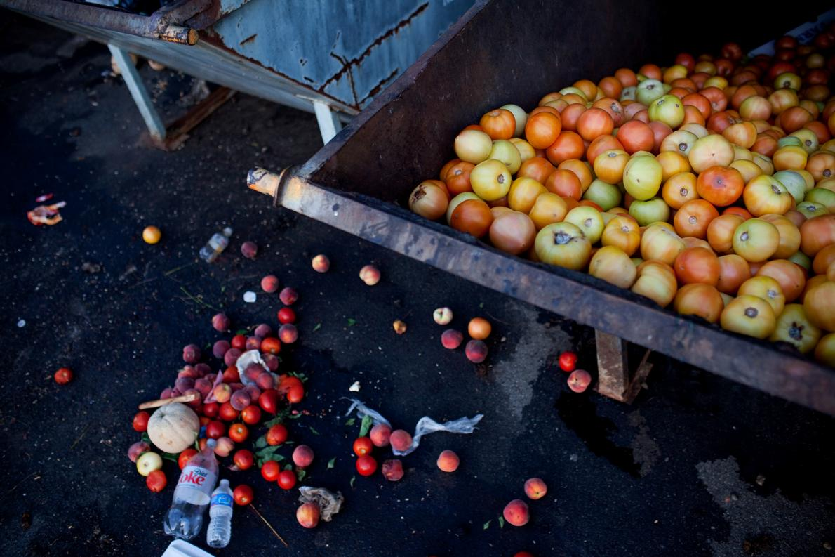 Unsold tomatoes fill a Dumpster at a farmers market in Asheville, North Carolina, even though community kitchens collect some of the castoffs from vendors five days a week. About 26 percent of fresh tomatoes in the United States never make it into consumer hands.