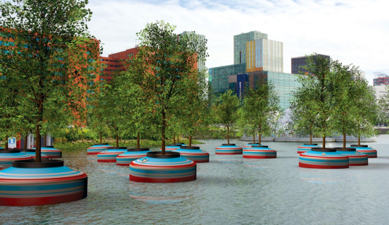 Soon, a forest of floating trees will be installed in a Dutch city's waterfront.